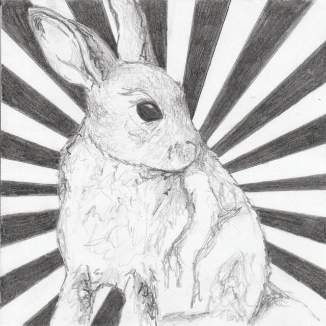 frankjuarez_rabbit (1)